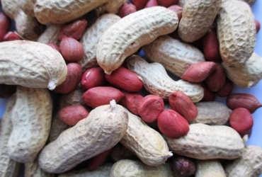 8 Popular Health Benefits of Valencia Peanuts
