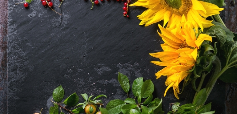 Try 10 Valuable Benefits Of Sunflower Seeds!