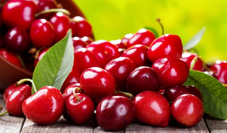 Cranberries health benefits and nutritional value